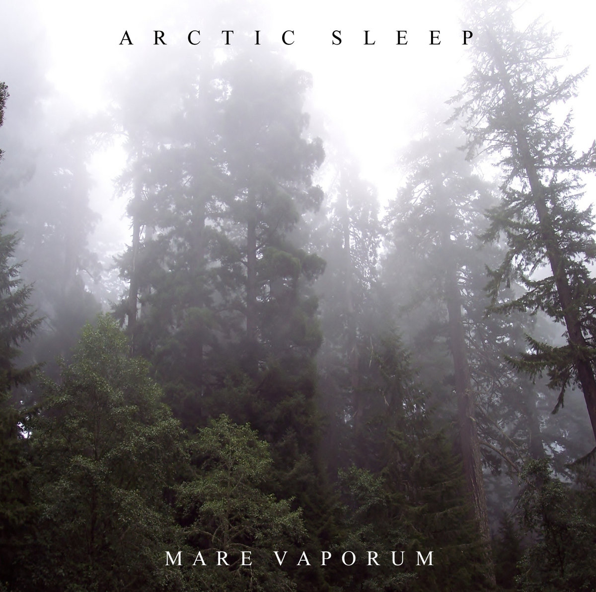 WFA: Arctic Sleep