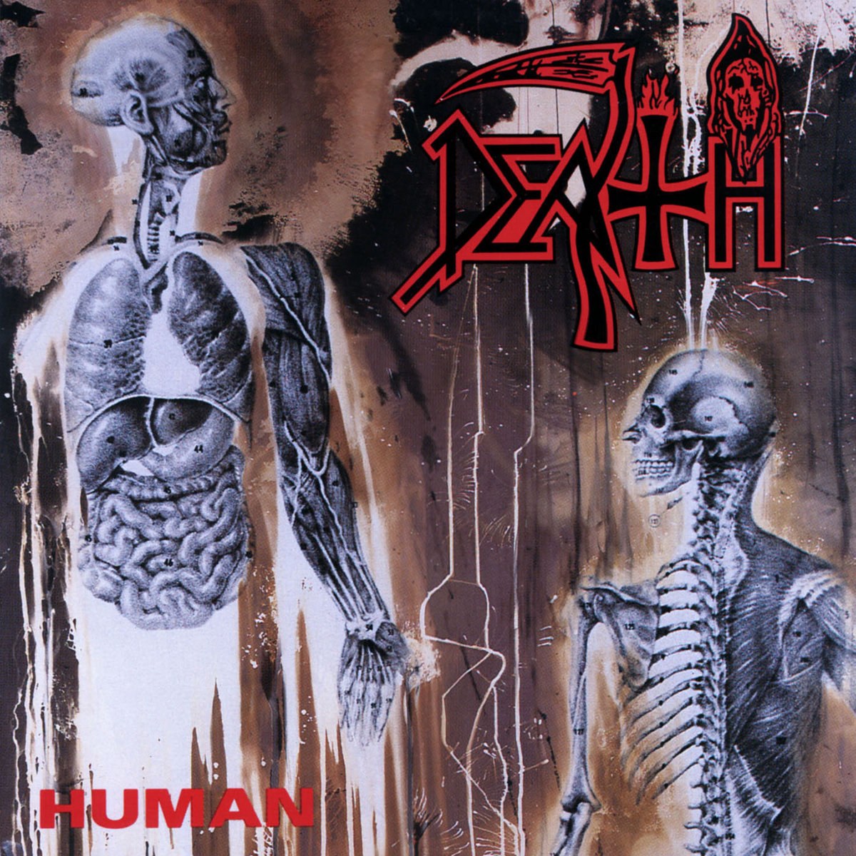 "A SCENE IN RETROSPECT: Death – ""Human"""